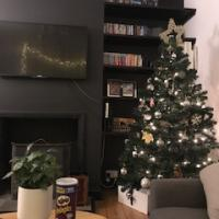 Christmas tree at our AirBnB